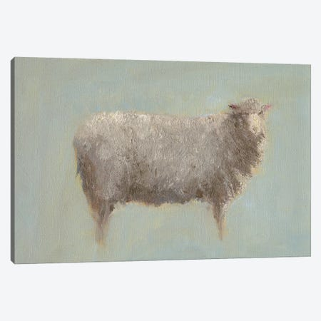 Sheep Strut III Canvas Print #WEN14} by Marilyn Wendling Art Print