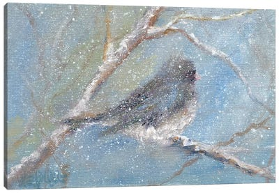 Chance of Snow II Canvas Art Print