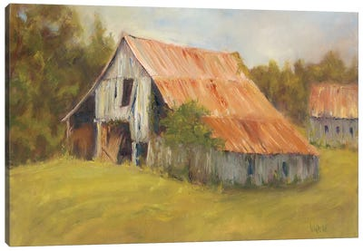 Tin Roof Canvas Art Print