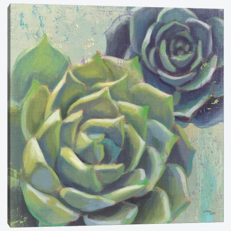 Succulents I Crop Canvas Print #WES1} by Wellington Studio Canvas Art