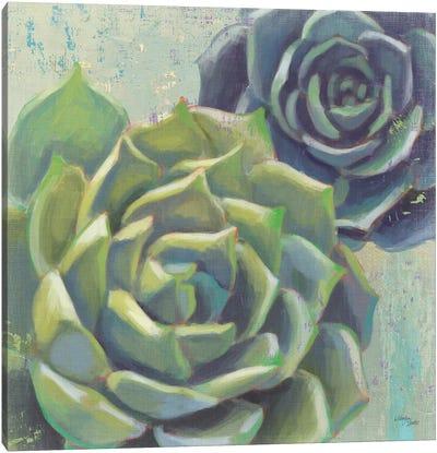 Succulents I Crop Canvas Art Print
