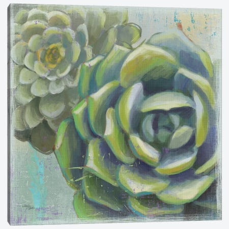 Succulents II Canvas Print #WES2} by Wellington Studio Canvas Wall Art