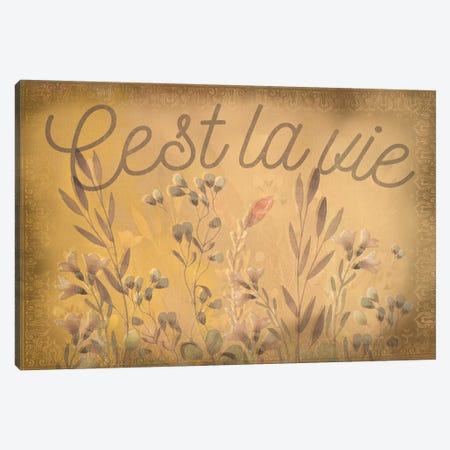 French Phrases From the Garden - Cest la Vie Canvas Print #WEX30} by 5by5collective Canvas Art