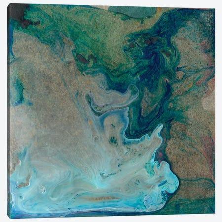 Barrier Island I Canvas Print #WIG101} by Alicia Ludwig Canvas Print
