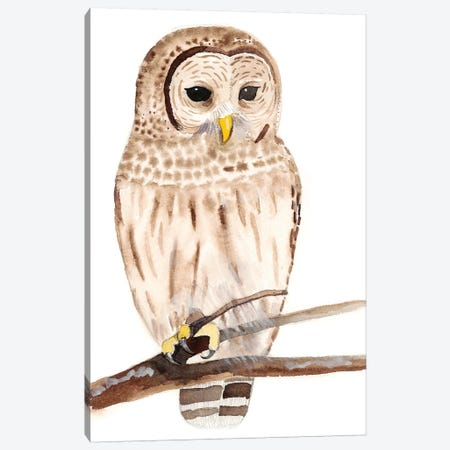 Hoo Dis III Canvas Print #WIG113} by Alicia Ludwig Canvas Art