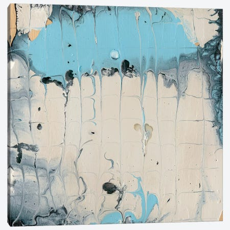 Rainmaker I Canvas Print #WIG115} by Alicia Ludwig Art Print