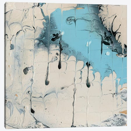 Rainmaker II Canvas Print #WIG116} by Alicia Ludwig Canvas Art Print