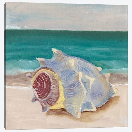She Sells Seashells I Canvas Print #WIG125} by Alicia Ludwig Canvas Art