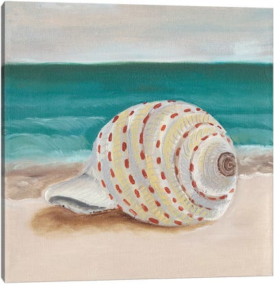 She Sells Seashells II Canvas Art Print