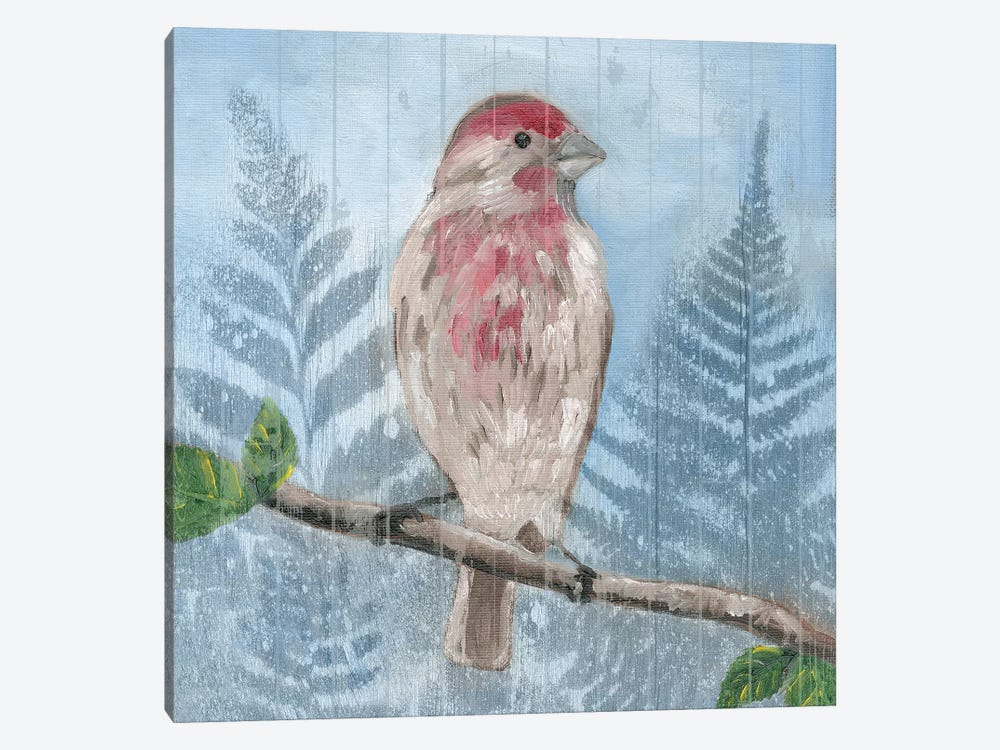 Eastern Songbird I by Alicia Ludwig 1-piece Canvas Print