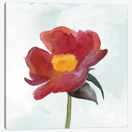 Joyful Peony I Canvas Print #WIG145} by Alicia Ludwig Canvas Wall Art