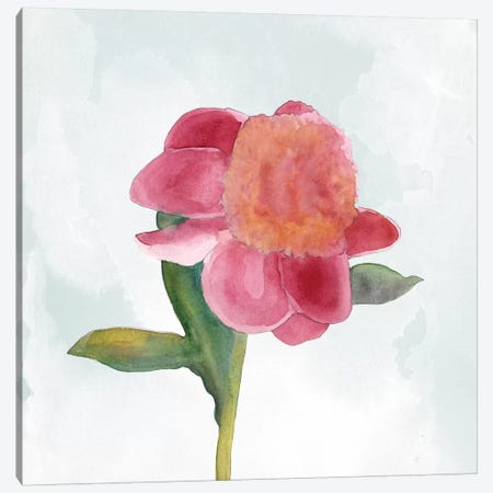 Joyful Peony III Canvas Print #WIG147} by Alicia Ludwig Canvas Art