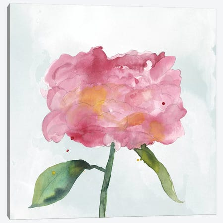 Joyful Peony IV Canvas Print #WIG148} by Alicia Ludwig Art Print