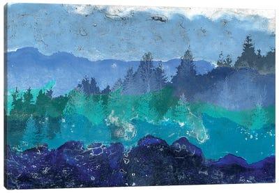Appalachian Trail I Canvas Art Print