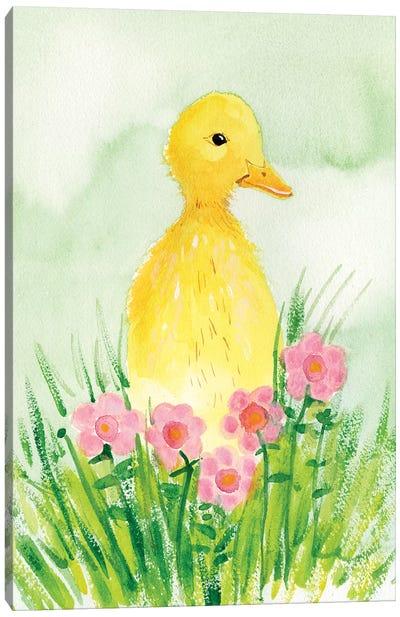 Baby Spring Animals III Canvas Art Print