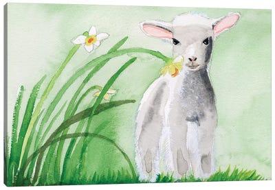Baby Spring Animals IV Canvas Art Print
