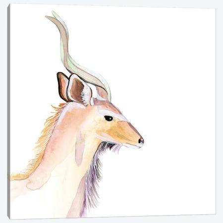 Sunset Safari IX Canvas Print #WIG213} by Alicia Ludwig Canvas Print