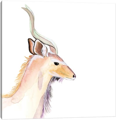 Sunset Safari IX Canvas Art Print