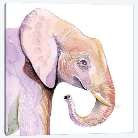 Sunset Safari VII Canvas Print #WIG216} by Alicia Ludwig Canvas Artwork