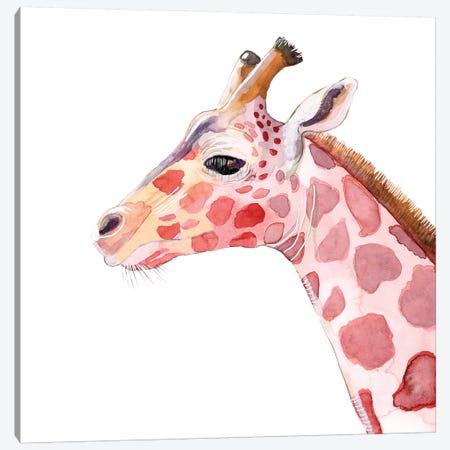 Sunset Safari VIII Canvas Print #WIG217} by Alicia Ludwig Canvas Art
