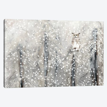 Snowy Habitat I Canvas Print #WIG229} by Alicia Ludwig Canvas Wall Art