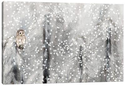 Snowy Habitat II Canvas Art Print