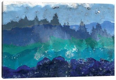 Appalachian Trail II Canvas Art Print