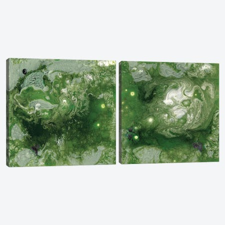 Pangaea Diptych Canvas Print Set #WIG2HSET002} by Alicia Ludwig Canvas Artwork