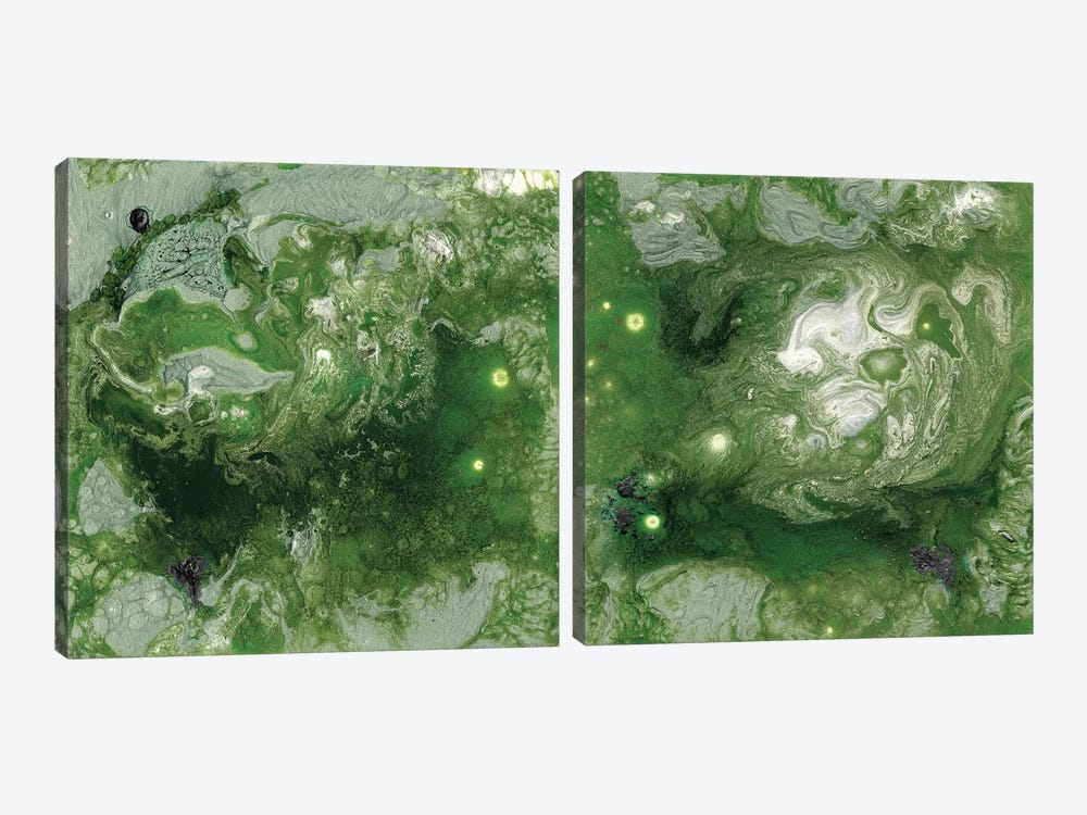 Pangaea Diptych by Alicia Ludwig 2-piece Canvas Artwork