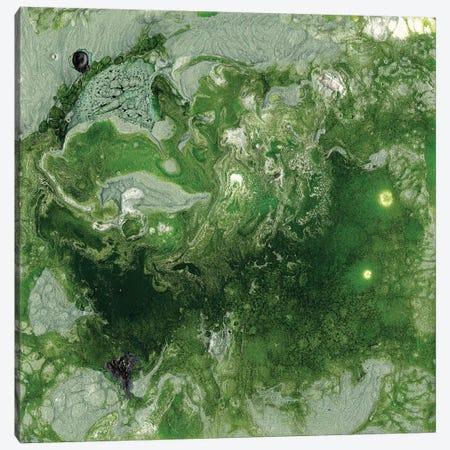 Pangaea I Canvas Print #WIG52} by Alicia Ludwig Art Print