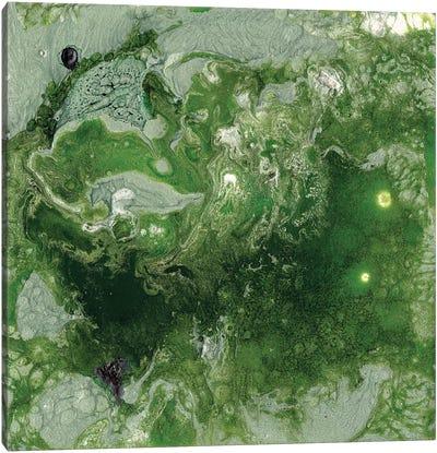 Pangaea I Canvas Art Print