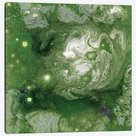 Pangaea II Canvas Print #WIG53} by Alicia Ludwig Canvas Art Print
