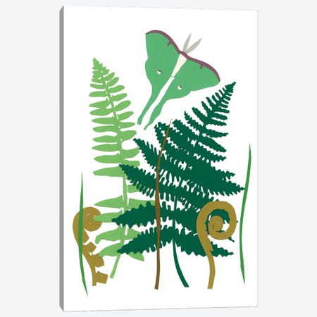Fern Fantasy Garden I Canvas Print #WIG60} by Alicia Ludwig Canvas Wall Art