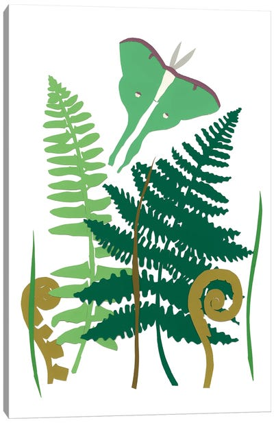 Fern Fantasy Garden I Canvas Art Print