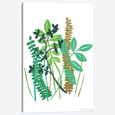Hedge Row III Canvas Print #WIG64} by Alicia Ludwig Canvas Art Print