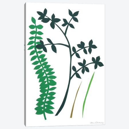 Hedge Row IV Canvas Print #WIG65} by Alicia Ludwig Canvas Art Print