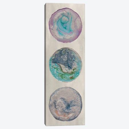 Planet Trio I Canvas Print #WIG70} by Alicia Ludwig Canvas Print