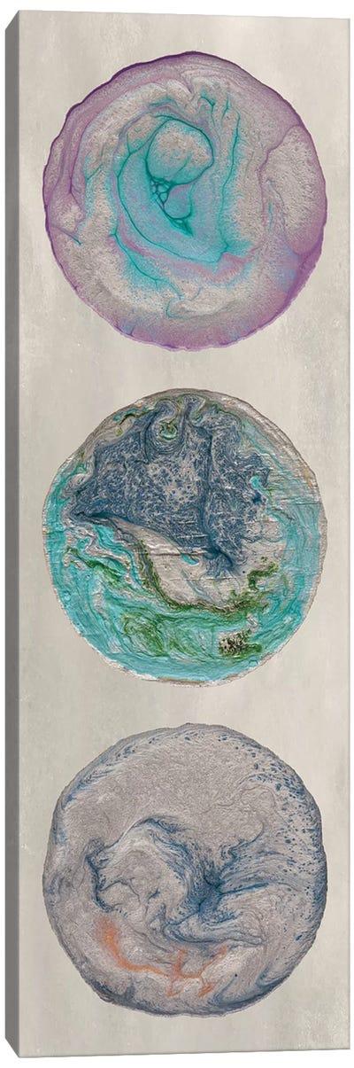 Planet Trio I Canvas Art Print