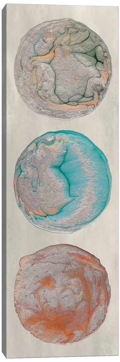 Planet Trio II Canvas Art Print