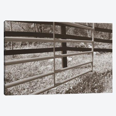 Sepia Farm Study I 3-Piece Canvas #WIG72} by Alicia Ludwig Art Print