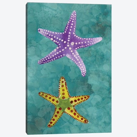 Twin Starfish II Canvas Print #WIG80} by Alicia Ludwig Canvas Wall Art