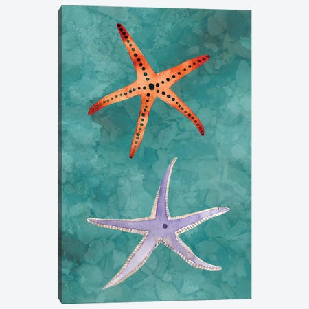 Twin Starfish III Canvas Print #WIG81} by Alicia Ludwig Canvas Artwork