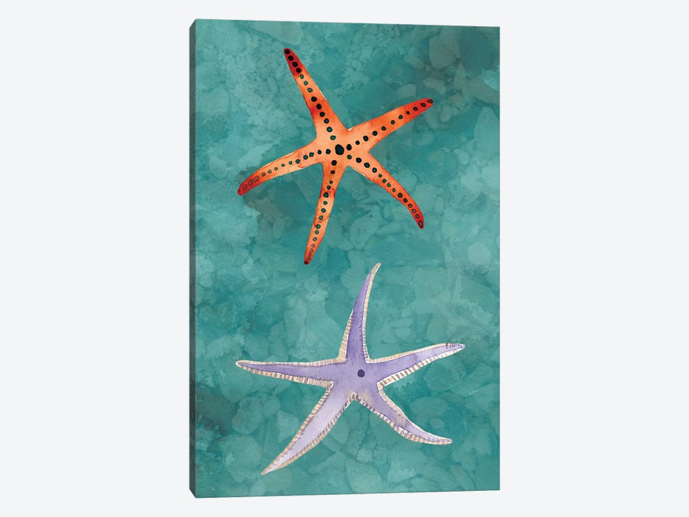 Twin Starfish III by Alicia Ludwig 1-piece Canvas Print