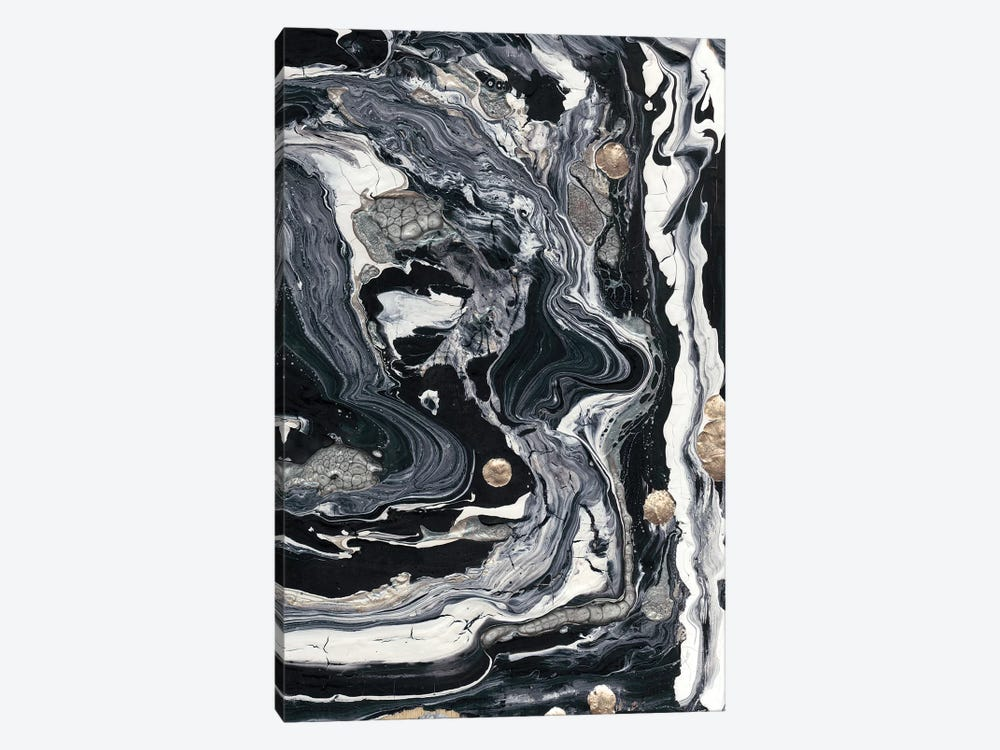 Ebony & Ivory II by Alicia Ludwig 1-piece Canvas Art