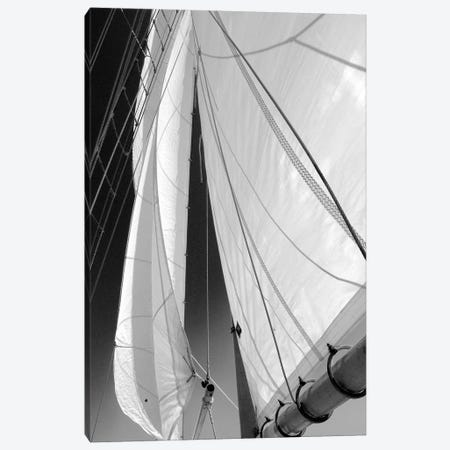 Sailboat Sails Canvas Print #WIN3} by Winthrope Hiers Canvas Artwork