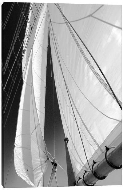 Sailboat Sails Canvas Art Print