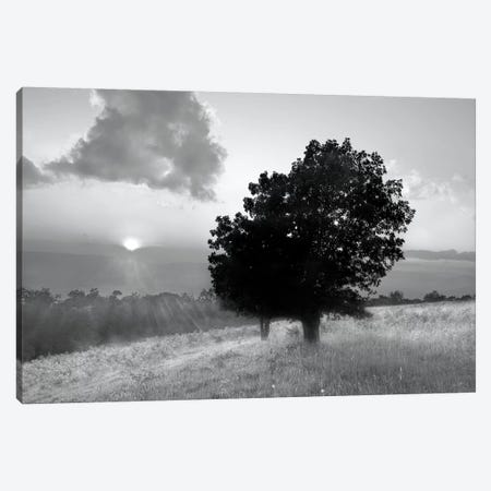 Spitler Knoll Overlook Canvas Print #WIN4} by Winthrope Hiers Art Print
