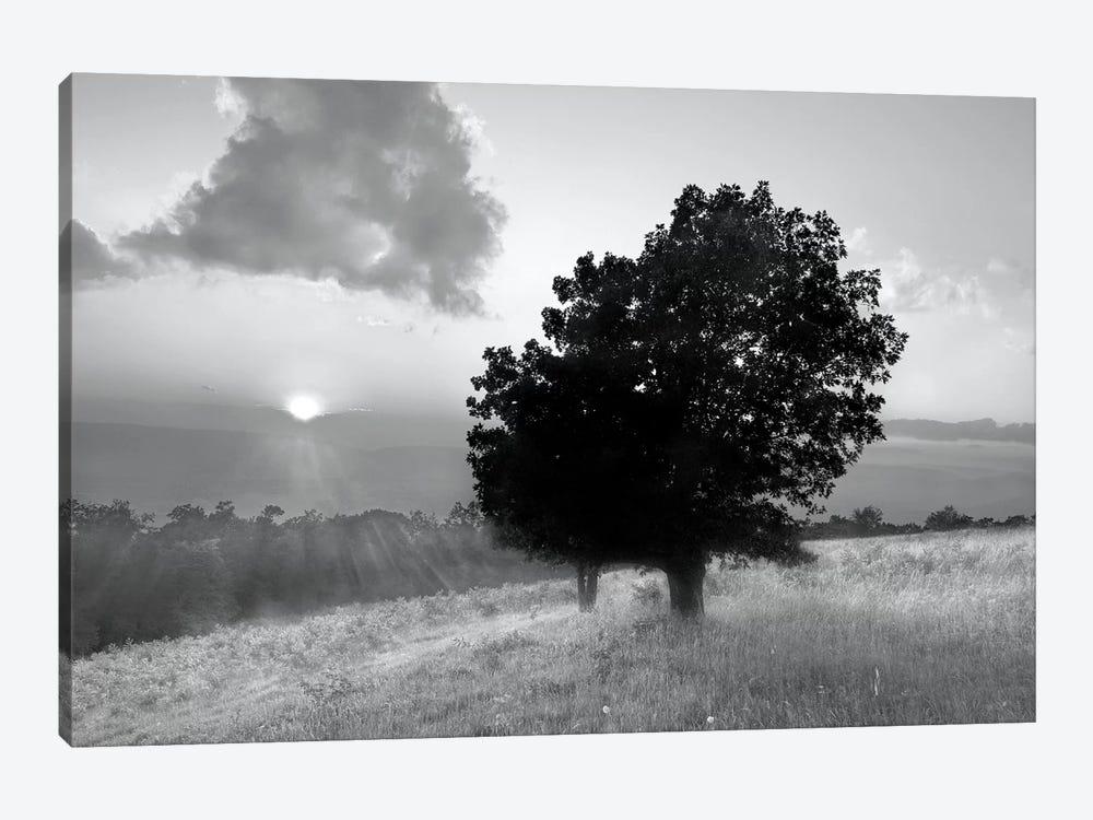 Spitler Knoll Overlook by Winthrope Hiers 1-piece Art Print