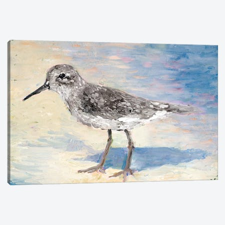 Sandpiper II Canvas Print #WJO10} by Walt Johnson Canvas Print
