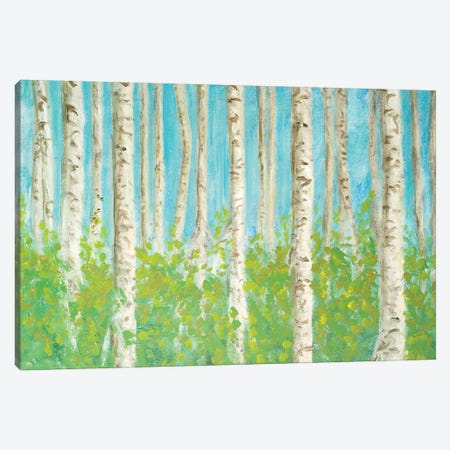 VIbrant Birchwood Canvas Print #WJO11} by Walt Johnson Canvas Art Print